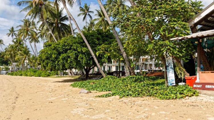 Makam Beach Phuket | Makham Bay Phuket